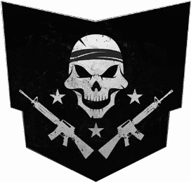 Call of Duty Black Ops 4 Blackout Free For All