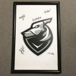 Counter Strike Offensive Poster Signed by Team Grayhound Esports Gaming ESL 2