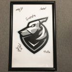 Counter Strike Offensive Poster Signed by Team Grayhound Esports Gaming ESL 3