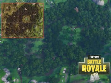 Fortnite Burning Wailing Woods