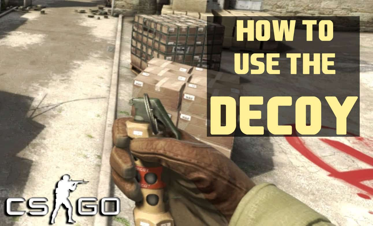 How To Use The Decoy And Is It Worth Buying It