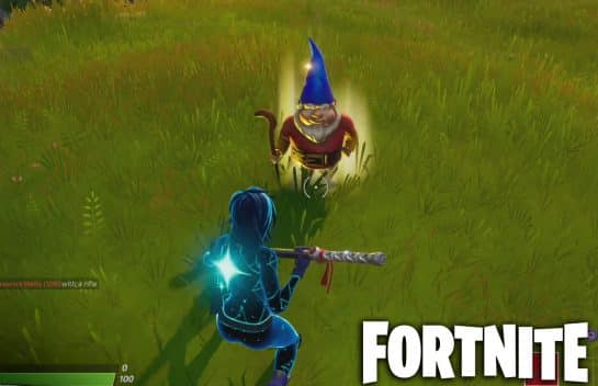 Search the Fortnite Gnome Between a Race Track, Cabbage Patch, Farm Sign Location